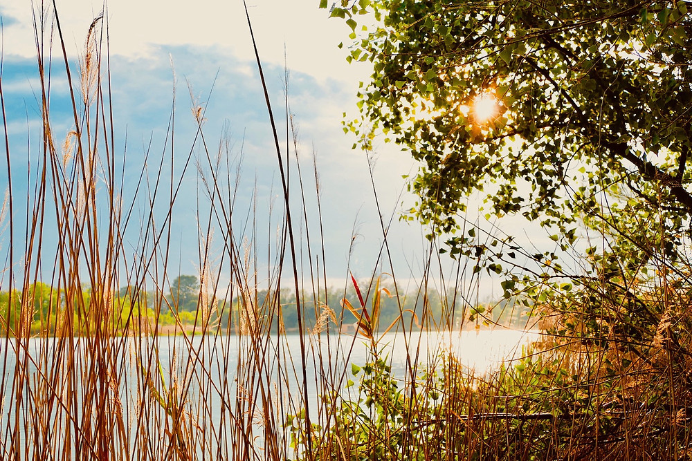 Coucher du soleil cabane des grands cépages