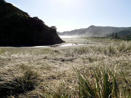 Nouvelle-Zélande : Waitomo et Auckland