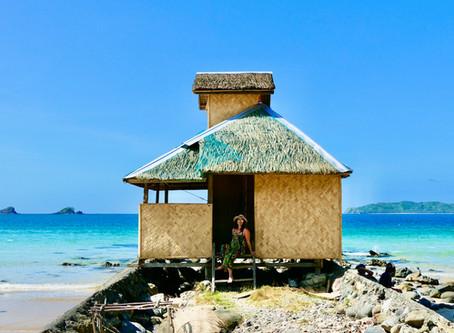 Les Philippines : El Nido et Flower Island
