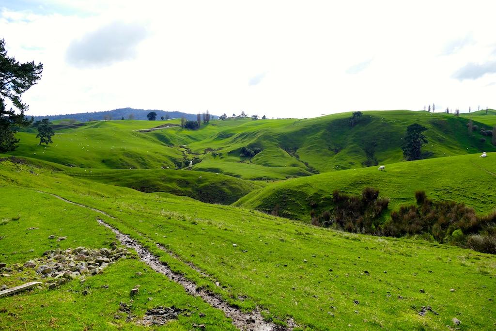 Paysages près d'Hobbiton