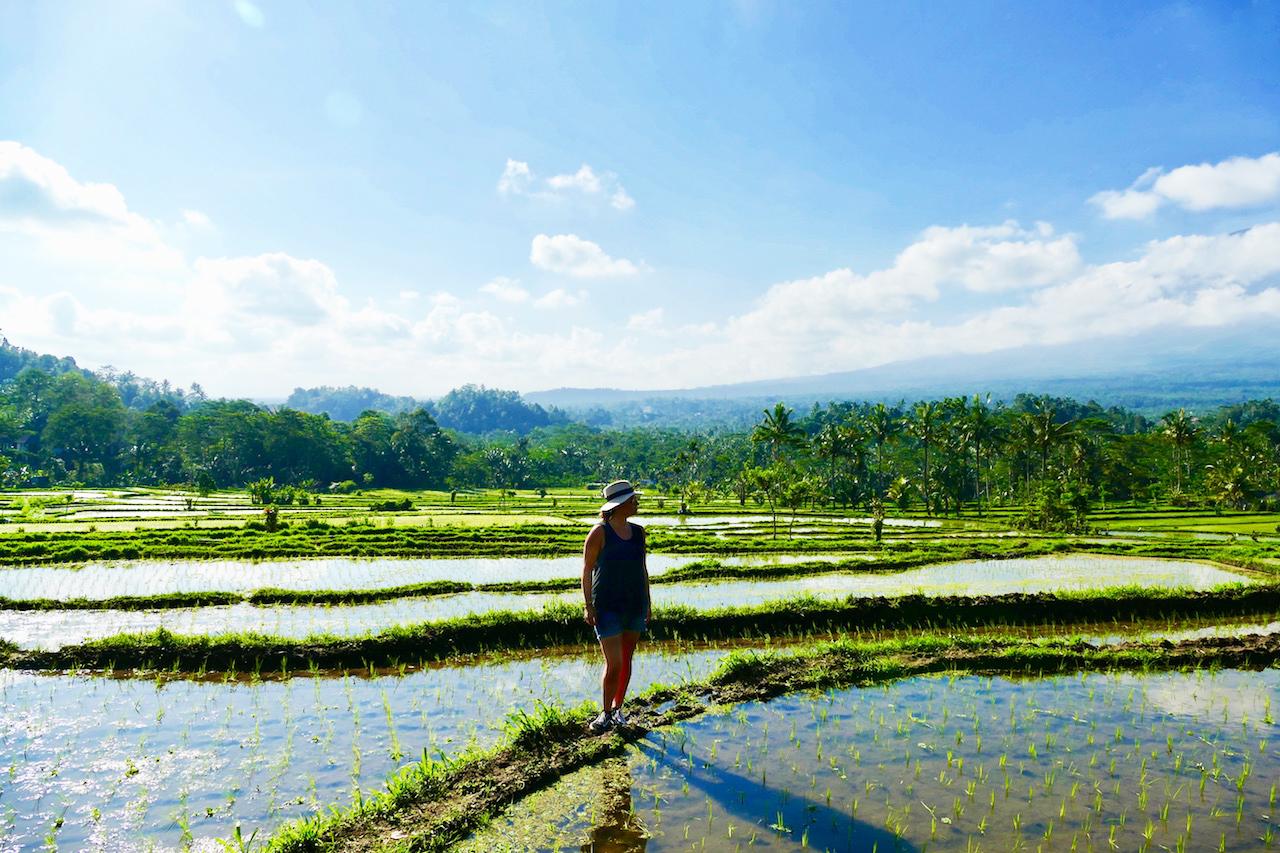 Balade dans les rizières à Sidemen