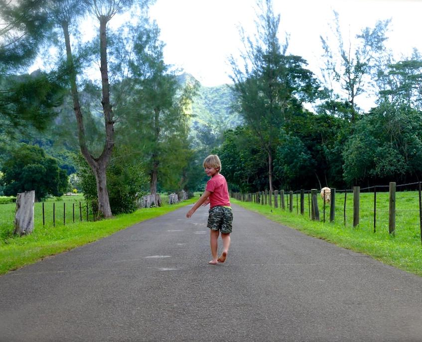 la route du belvédère à Moorea