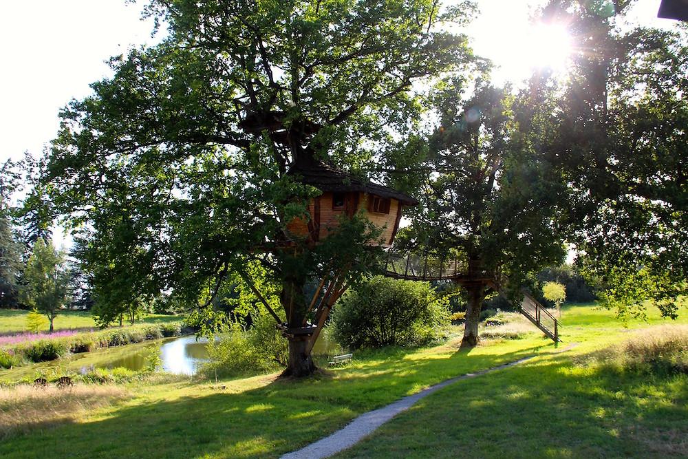 Cabane dans les arbres - Domaine de Chaligny