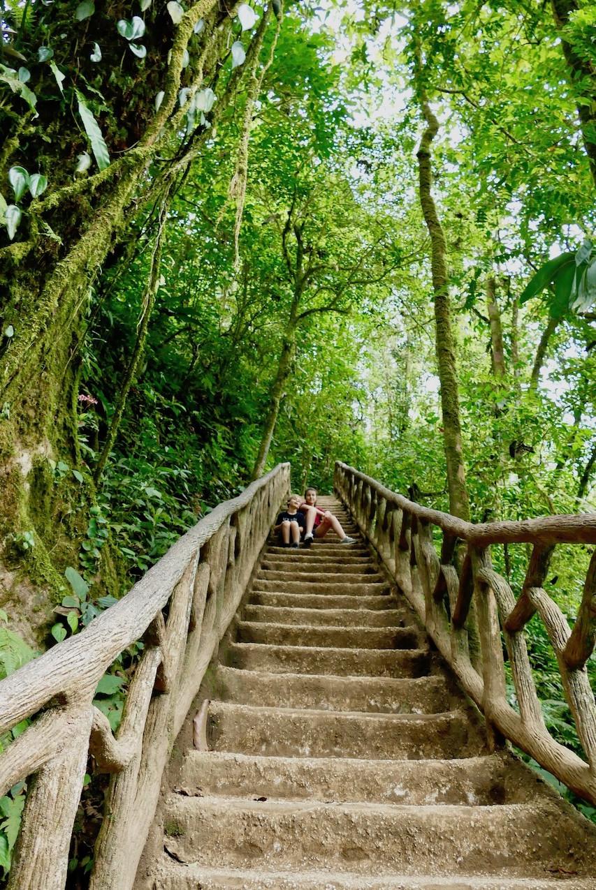 escaliers menant à la cascade