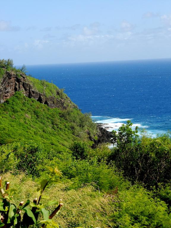 Sentier pour aller à Grand'Anse
