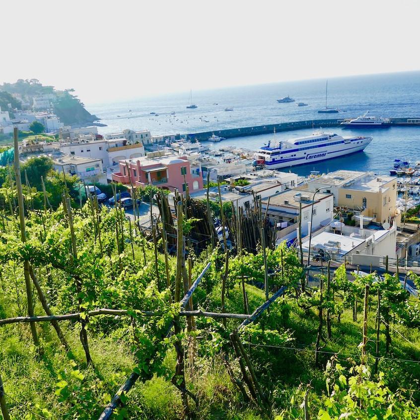 La vue de Marina Grande à Capri