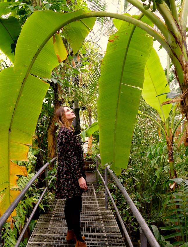 Jardin botanique Amsterdam