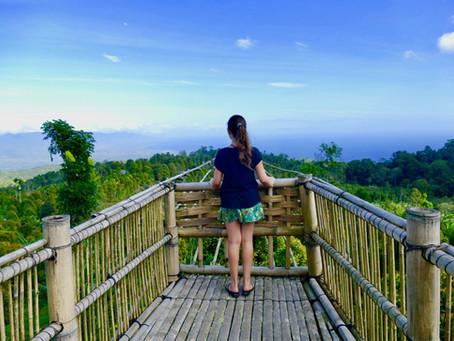 Nos coups de coeur à Bali : Amed, Menjangan et Munduk