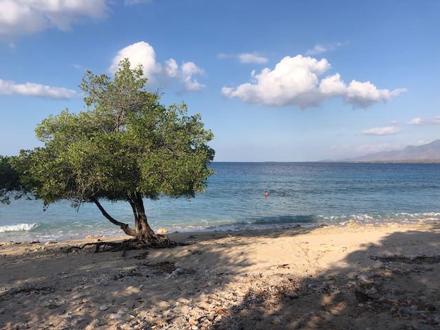 Plage du Nusa Bay Menjangan à Bali