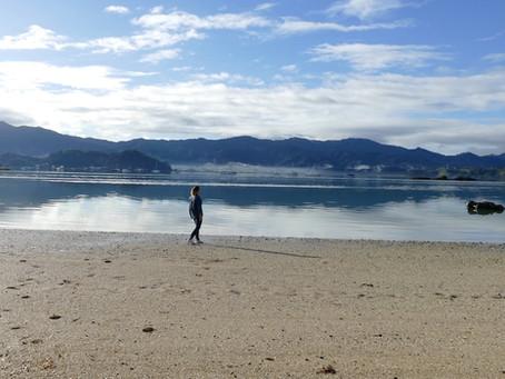 Nouvelle-Zélande : La péninsule de Coromandel