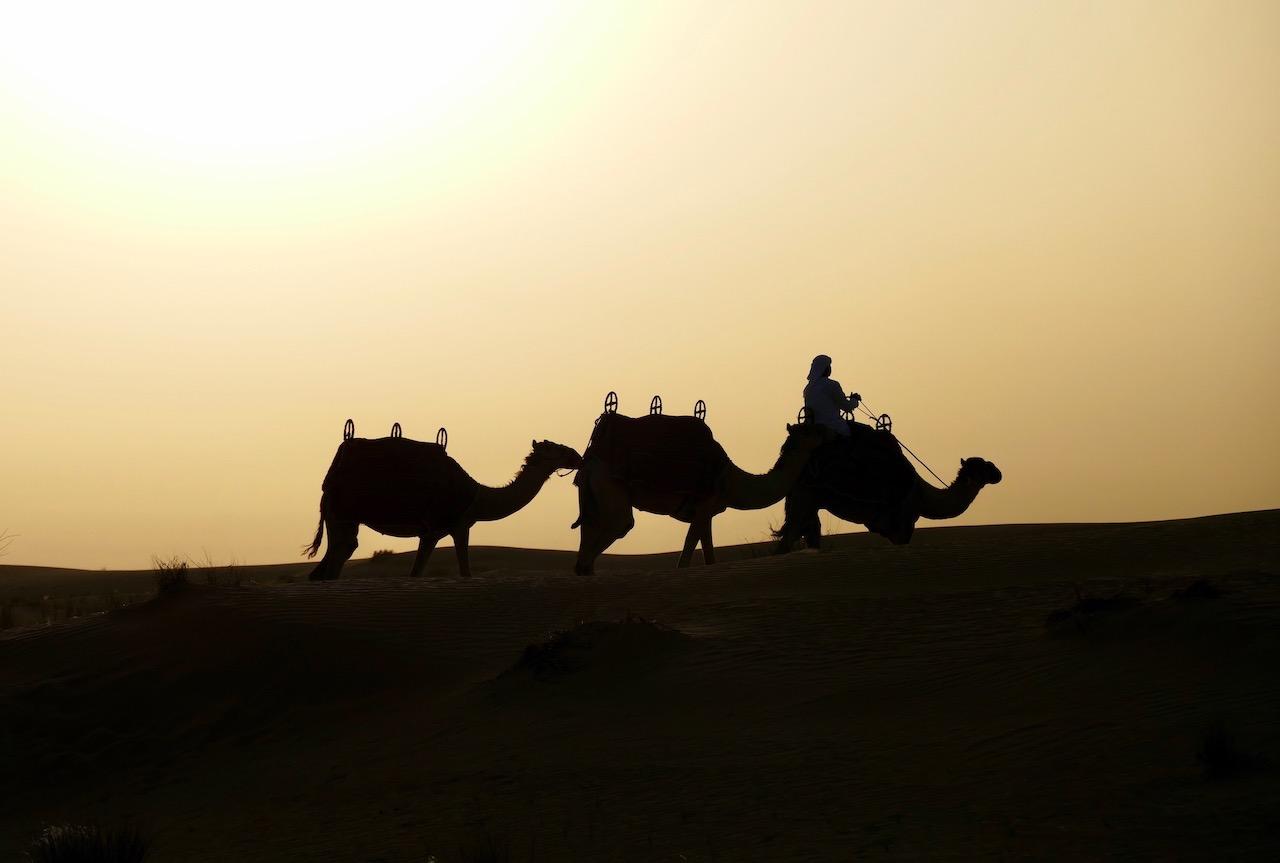 Coucher du soleil dans le désert de
