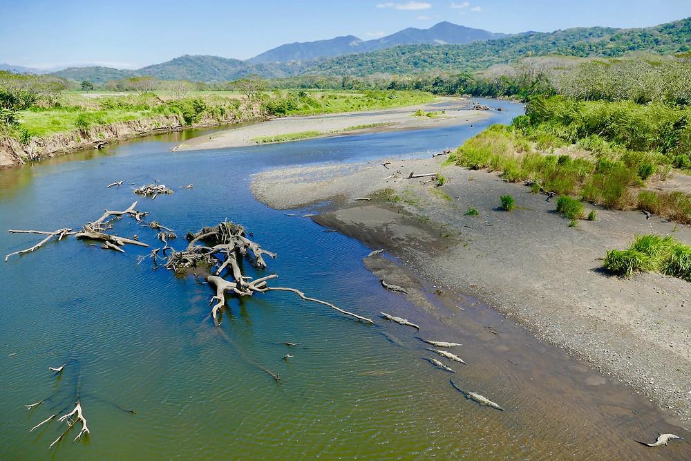 Rio Tarcoles au Costa Rica