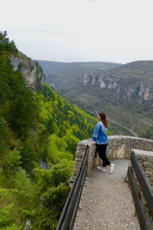 Vue panoramique sur les gorges de la Jonte en Aveyron