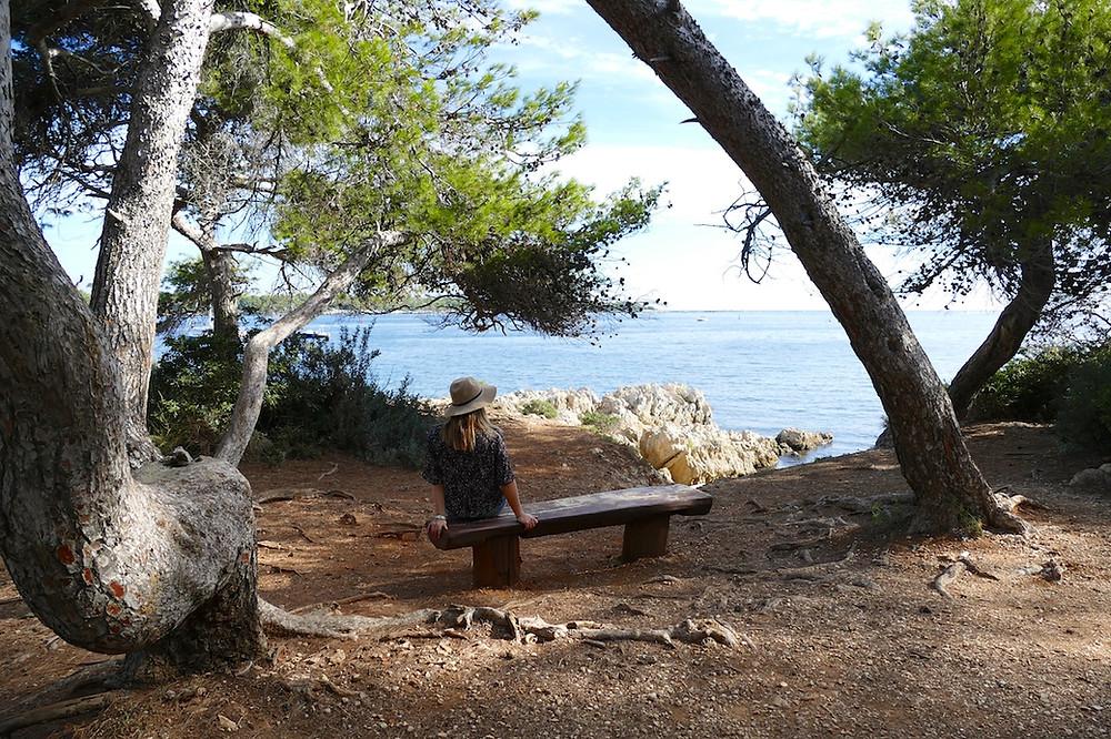 Balade sur l'île de Saint-Honorat