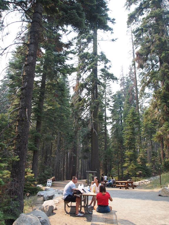 Déjeuner à Yosemite