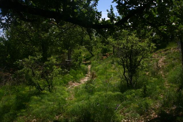 zones natrelles à la ferme