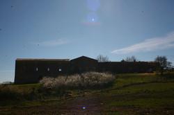 La ferme en printemps