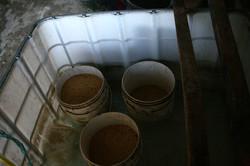 le station de germination