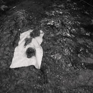 Before, Paper Under Rock in Shotpouch Creek #2