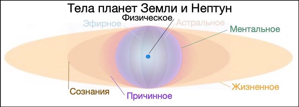 Сущностные тела планет Земли и Нептуна, Человеков №6