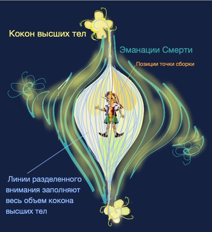Кокон человека №4 с линиями разделенного внимания