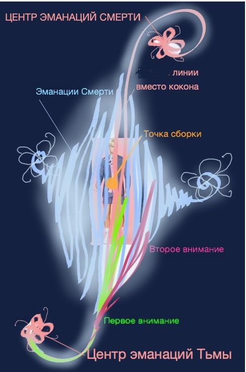 Кокон человека №1, центр тяжести (точка сборки) в животе (инстинктивном центре)