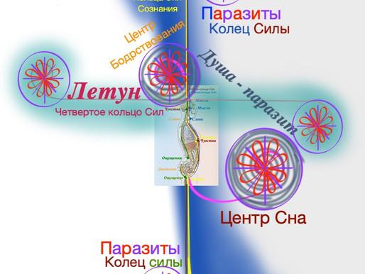 Паразиты Рода, Душа - паразит, паразиты центров (чакр)