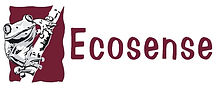 Ecosense%20Logo%20Burgundy_edited.jpg