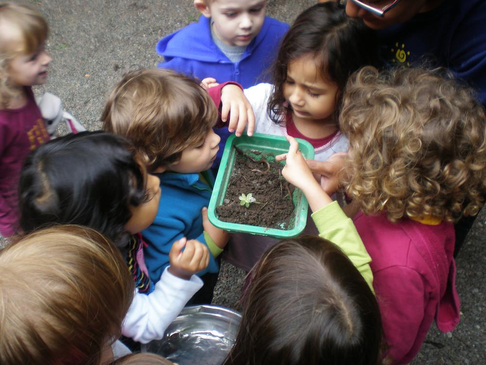 Crianças mexendo nas minhocas encontradas