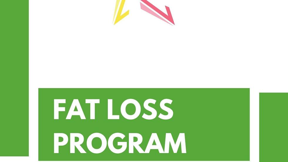 Fat Loss Program - Gym
