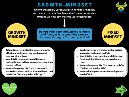 "Growth-Mindset: ""Anything is learnable"""