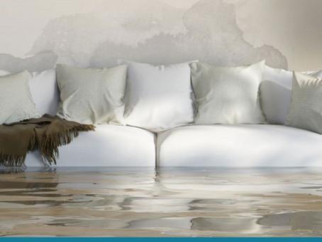 Constat amiable de dégât des eaux