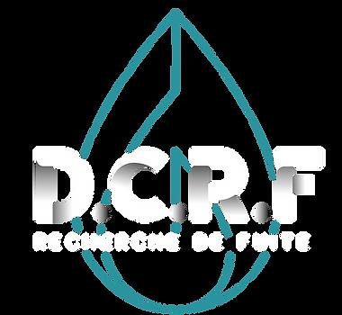 Logo 3 DCRF fond transparent_Plan de tra
