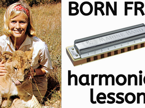 Born Free (Movie Soundtrack) - Harmonica Tabs & Lesson