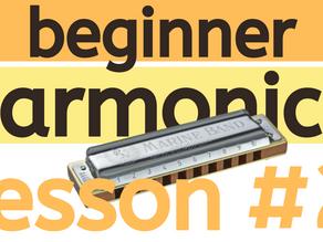 Beginner Harmonica Lesson 2 - Feeling the Beat