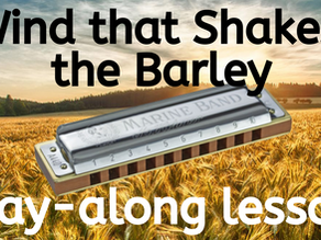 Wind That Shakes the Barley (Reel) - Harmonica Tabs & Lesson