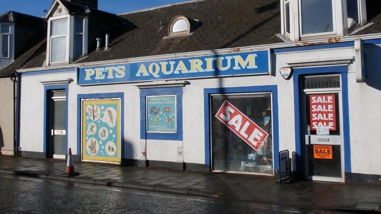 The Pet's Aquarium Shop - In Prestwick