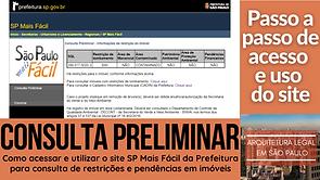 capa_consulta preliminar.png