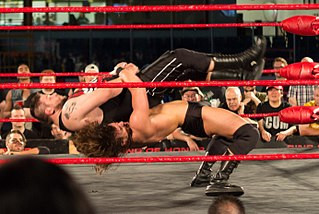 Why I Never Grew Out Of Watching Professional Wrestling