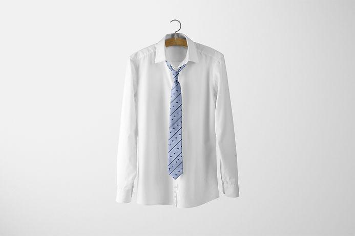 BLue tie design on white gound.jpg