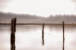 Fanny Bay, BC (1 of 1)