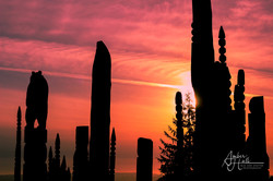 Burnaby Mountain_Totem Poles (1 of 1)