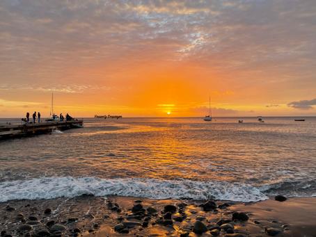 Martinique, treasure of the Caribbean 🌺✨