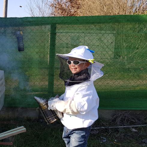 Travail à la ruche