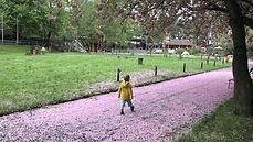 blueten-kind-rosa-stralsund-zoo-mamaskin