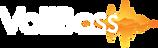 logo-voltbass.png