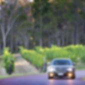 182 Cape Chauffeurs_1.jpg