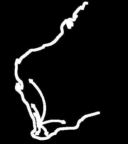 capechauffeurs_webmap-06.png