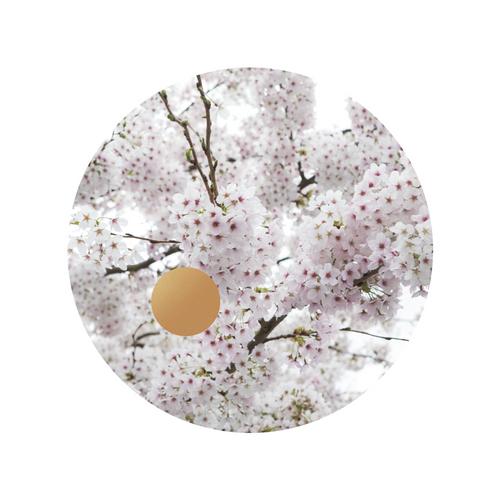 Blossom Gold_Eden Hart.png