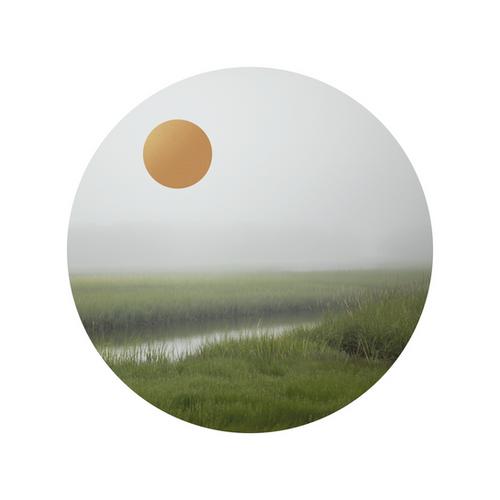 Grass Gold_Eden Hart.png